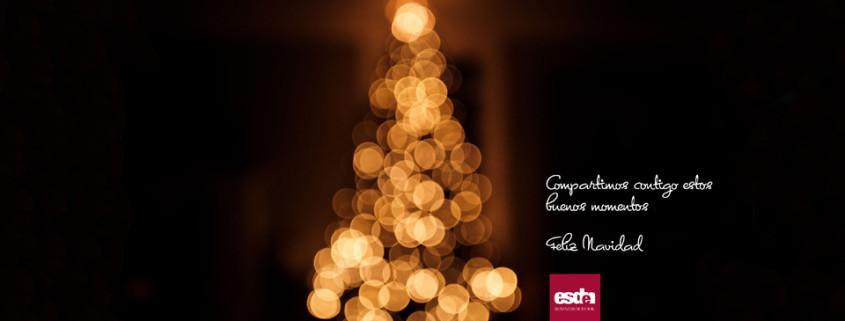 christmas Esden 2018-19